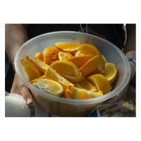 A bowl of sliced oranges