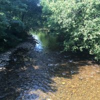 A photo of the river Rumney